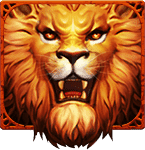 lion romax